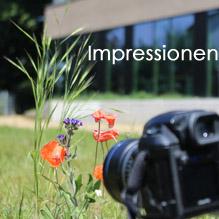 Starkenburg Gymnasium in Bildern
