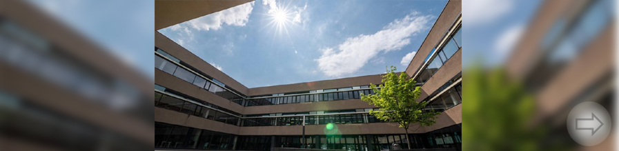 Großes Angebot bei Nachmittagsbetreuung am Starkenburg Gymnasium